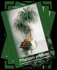 pflanzen-erleben-01a